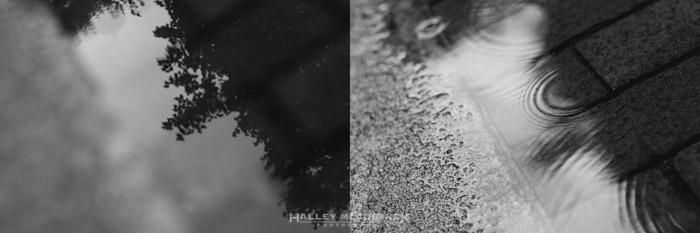 Rain-reflection
