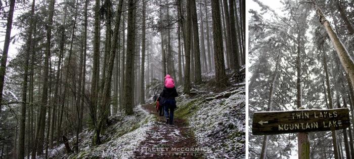 IMG_6738-trail