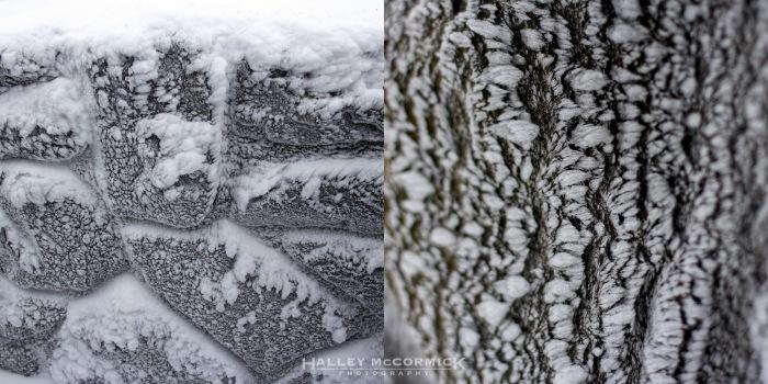 IMG_6887-snowy_rocks